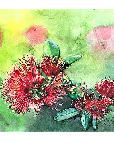 NZ Artist Blank Greeting Card Pohutukawa