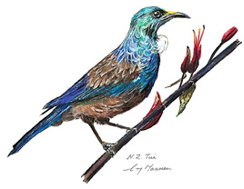 NZ Artist Blank Greeting Card Tui