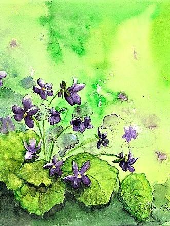 NZ Artist Blank Greeting Card Violets