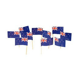 NZ Flag Picks x 20