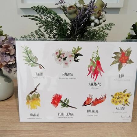 NZ Flora Chart - Framed A4 Print
