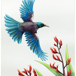 NZ In Flight Tui - Card