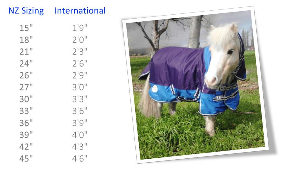 Nz International Size Chart