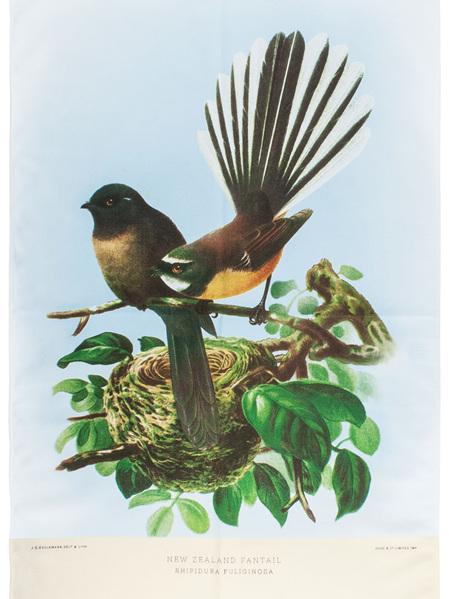NZ Native Bird Tea Towels & Cushion Covers