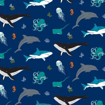 Ocean Life - Whales