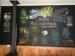 Ohiwa Macadamias Shop artwork