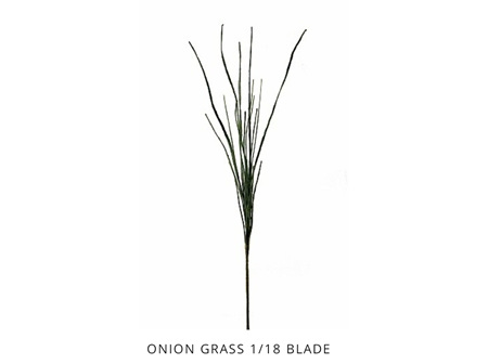 Onion Grass 1/18 Blade Olive