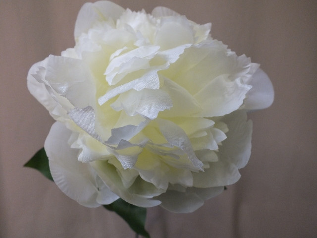 opening peony bud artificial silk fake not real