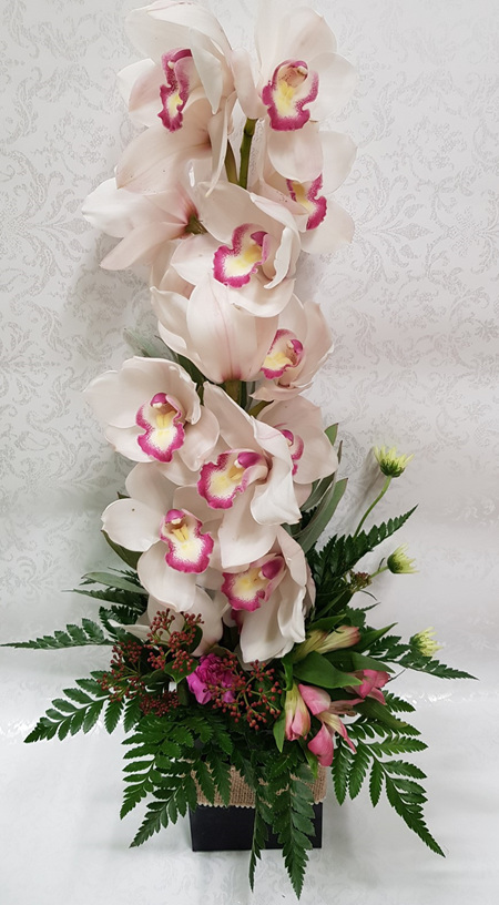 Orchid Arrangement