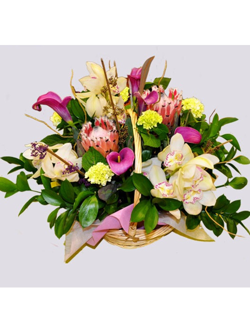 Orchid Country Basket