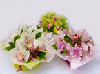 orchid posy bowls