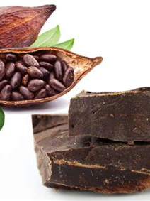 Organic Cacao Paste (Raw Cacao Liquor) - 100g