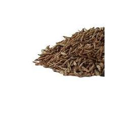 Organic Caraway Seed - 10g