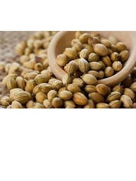 Organic Coriander Seed - 10g