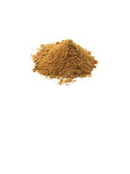 Organic Cumin Ground - 10g