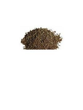 Organic Cumin Seed - 10g