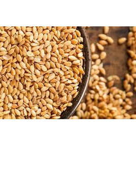 Organic Golden Linseed(Flaxseed) - 100g