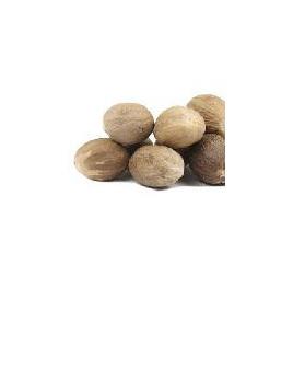 Organic Nutmeg  Whole - 10g