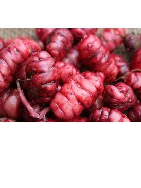Organic NZ Yams(red) - 500g