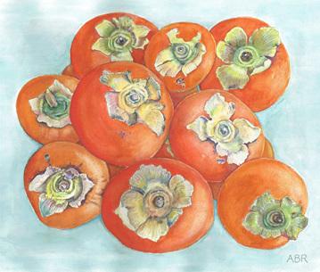 Organic persimmons painting