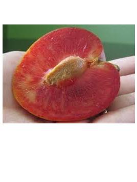 Organic Plums(Elephant Heart) - 1 Kg