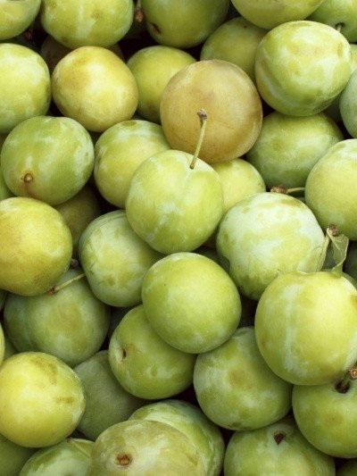 Organic Plums (Green Gage) - 500g
