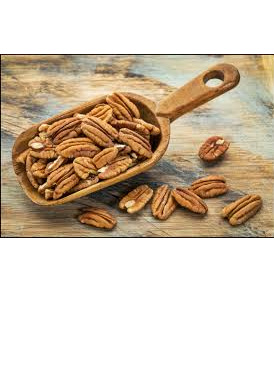 Organic Raw Activated Pecans - 100g