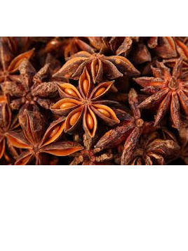 Organic Star Anise Whole - 10g