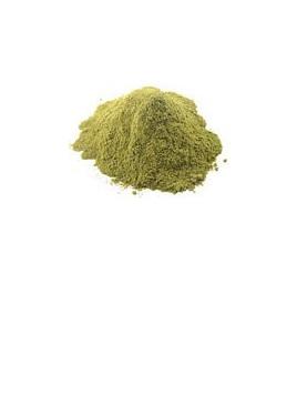 Organic Stevia Leaf Powder - 10g