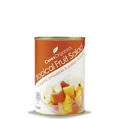 Organic Tropical Fruit Salad in Fruit Juice 400g