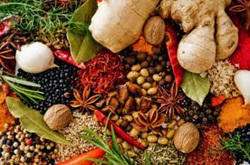 Organic Herbs & Spices - More2U