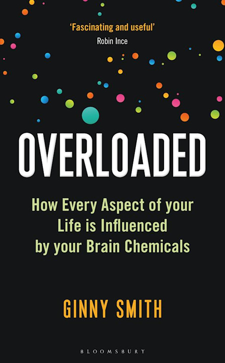 Overloaded | How Life is Influenced by Your Brain Chemicals