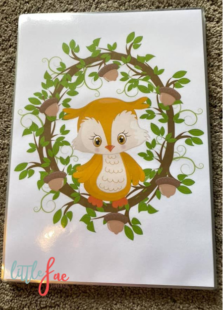 Owl Picture 2