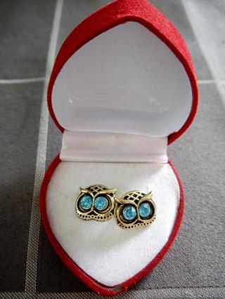 Owl with Blue Eyes Earrings