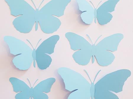 Pacific blue paper butterflies