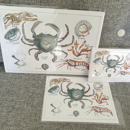 Paddle Crab A5 Print