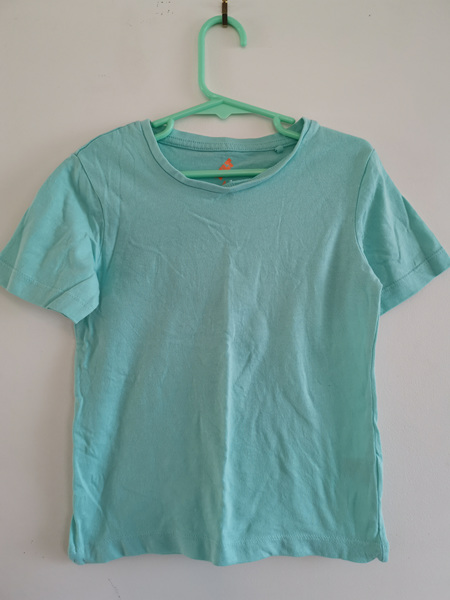 Pale Green T-Shirt