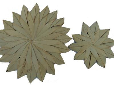 Palm Daisies