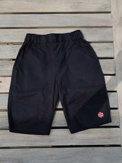Papoose Navy shorts