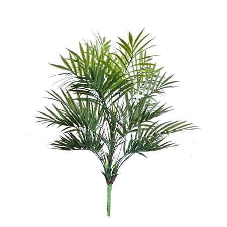 Parlour Palm 4546