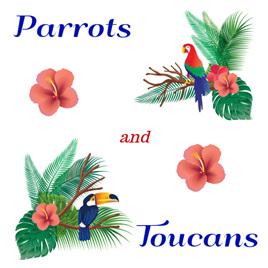 Parrots & Toucans