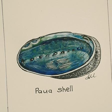 Paua Greeting Card