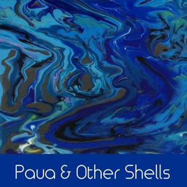 Paua & Other Shells