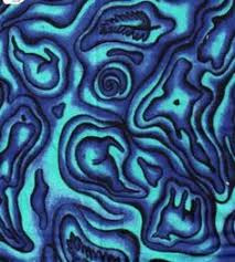 Paua Pictures Blue