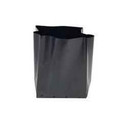 PB 6.5 Plant Bag 10 Pack