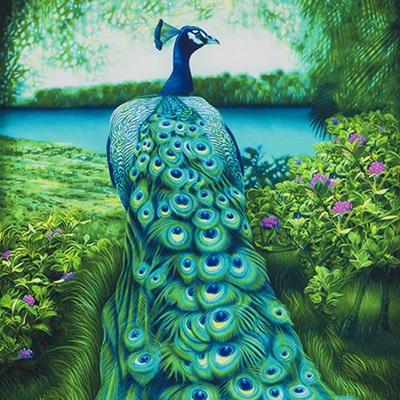 Peacock Elegance - Panel