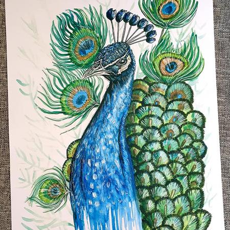 Peacock Print A4