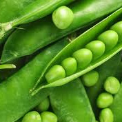Peas Fresh (New Season) Certified Organic 100g