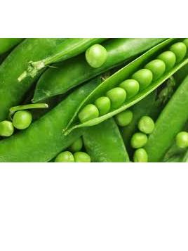 Peas Fresh (New Season) Certified Organic Approx 250g