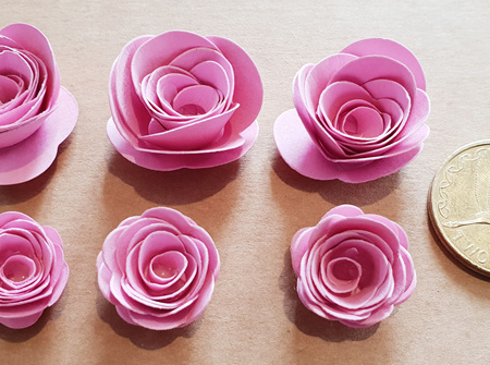 Peony mini roses